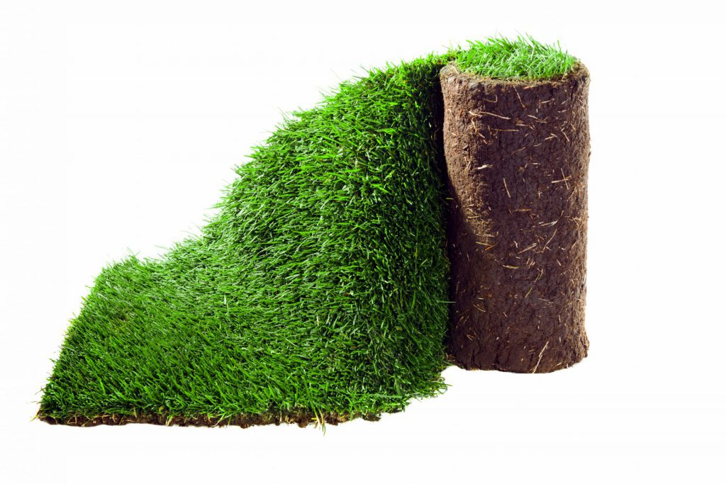 Rullgräs från Åland