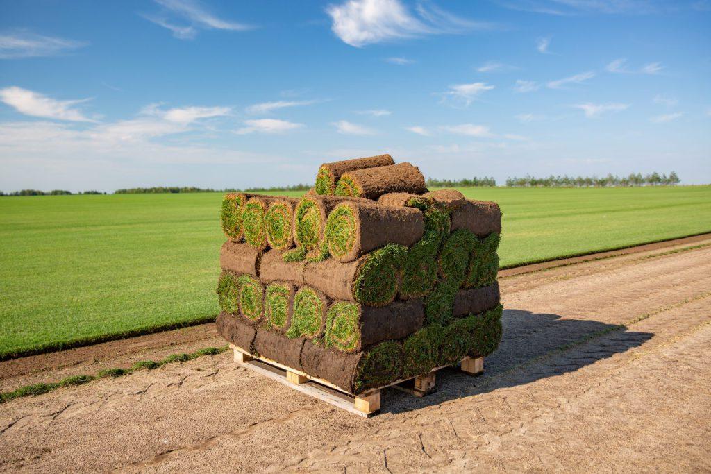 rullgräs på pall från Åland
